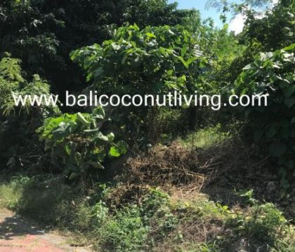 Land for sale 2,4 are-Umalas