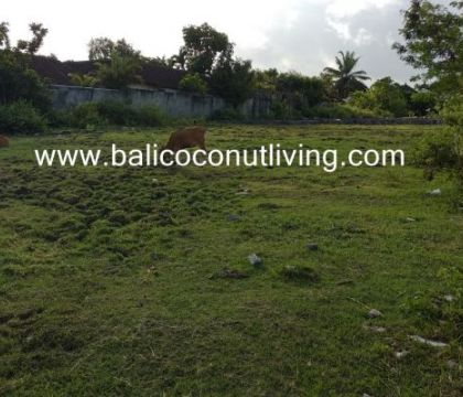 Land for sale 5 are-Umalas