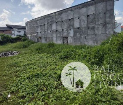 Land for lease 3 are Berawa