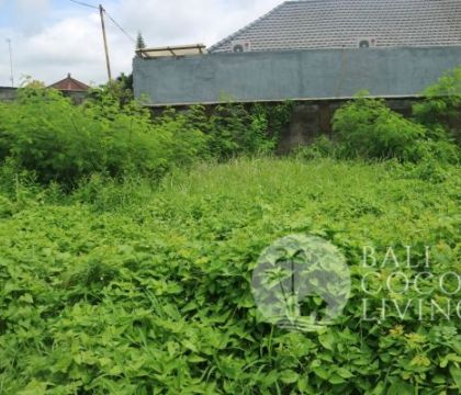 Land for sale 10 are